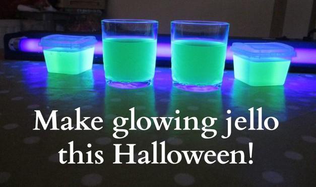 halloween-fluorescent-lights-what-the-doost-doost