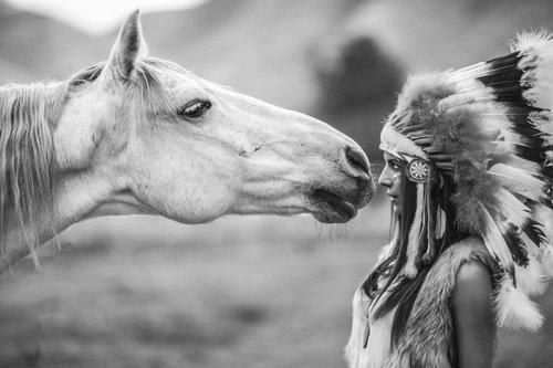 horse, girl