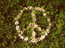 PeaceFlowers